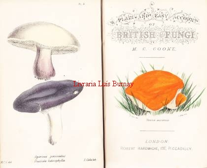 Plain and Easy account of British Fungi: with descriptions of the esculent and poisonous species, details of the principles of scientific classification, and a tabular arrangement of orders and genera.